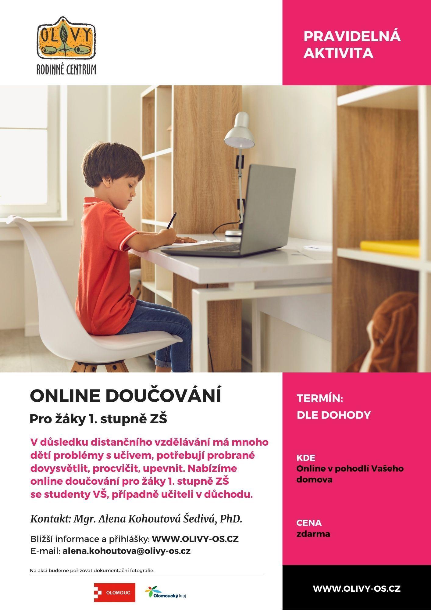 Online-doučování